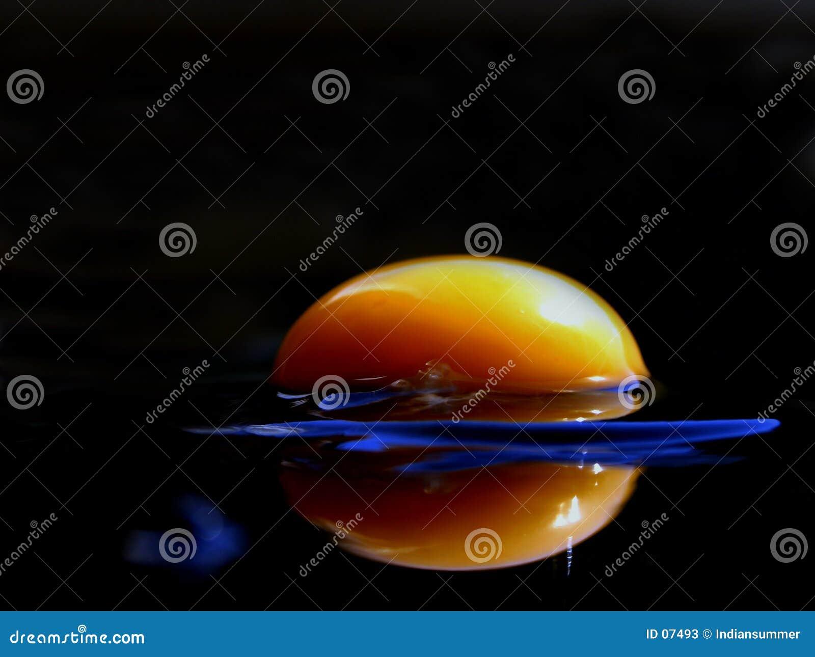 Serie för äggextreme iii