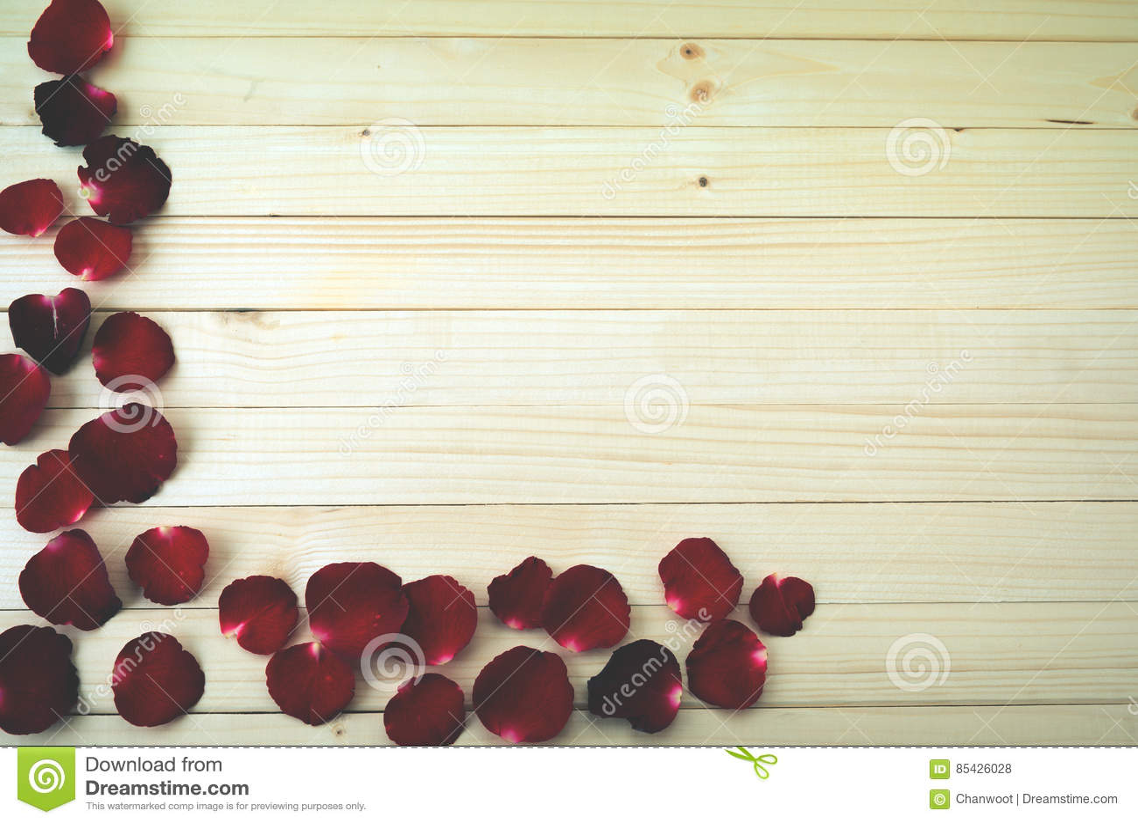 Serie för blom- petals för bakgrund rose