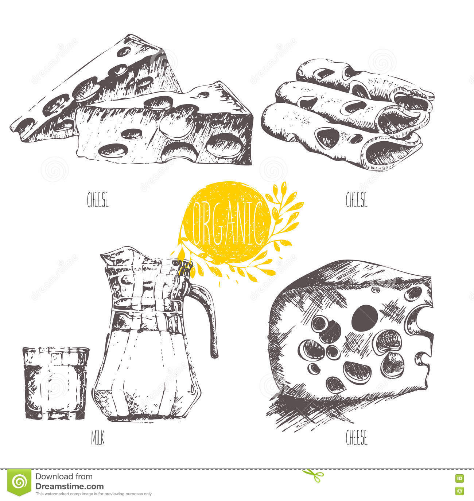 Fruit Illustration Series Cartoon Vector | CartoonDealer.com #3801639