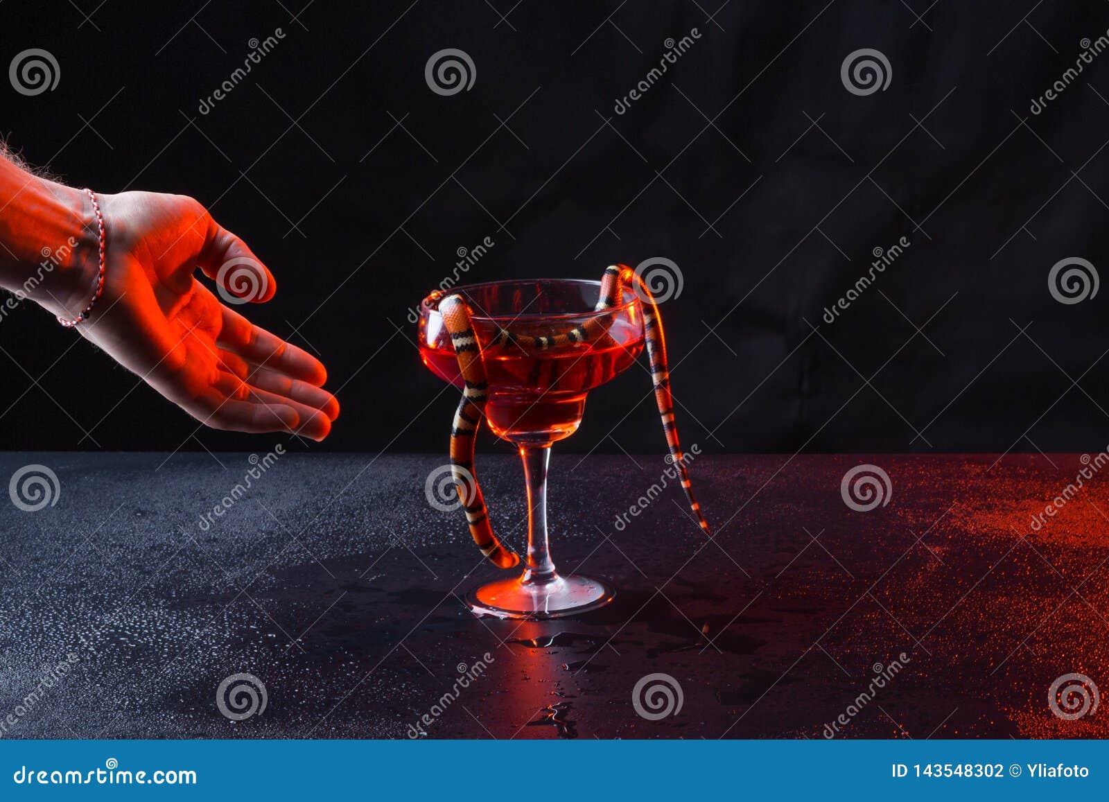 Serpente in un vetro con liquido rosso ed in una mano brutale maschio contro un fondo scuro