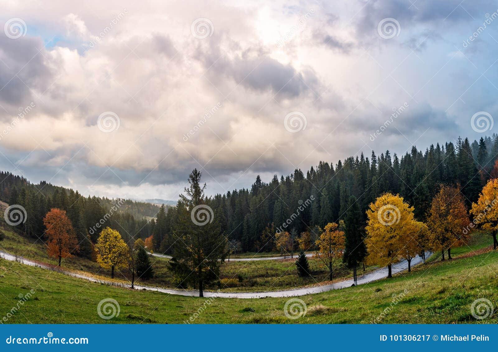 Serpentina attraverso la foresta in autunno