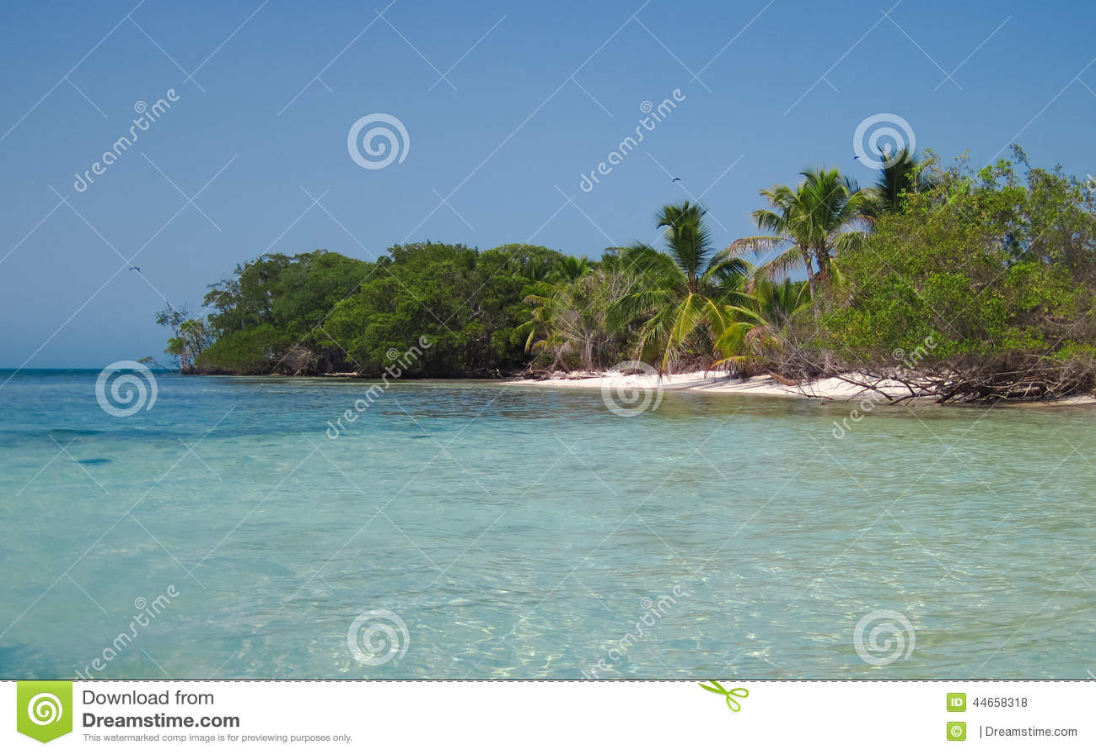 Serpiente del oeste Caye