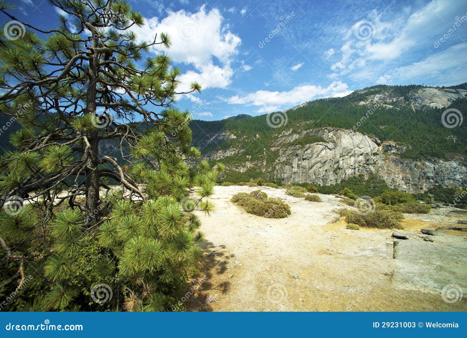 Download Serra montanhas de Nevada imagem de stock. Imagem de árvores - 29231003