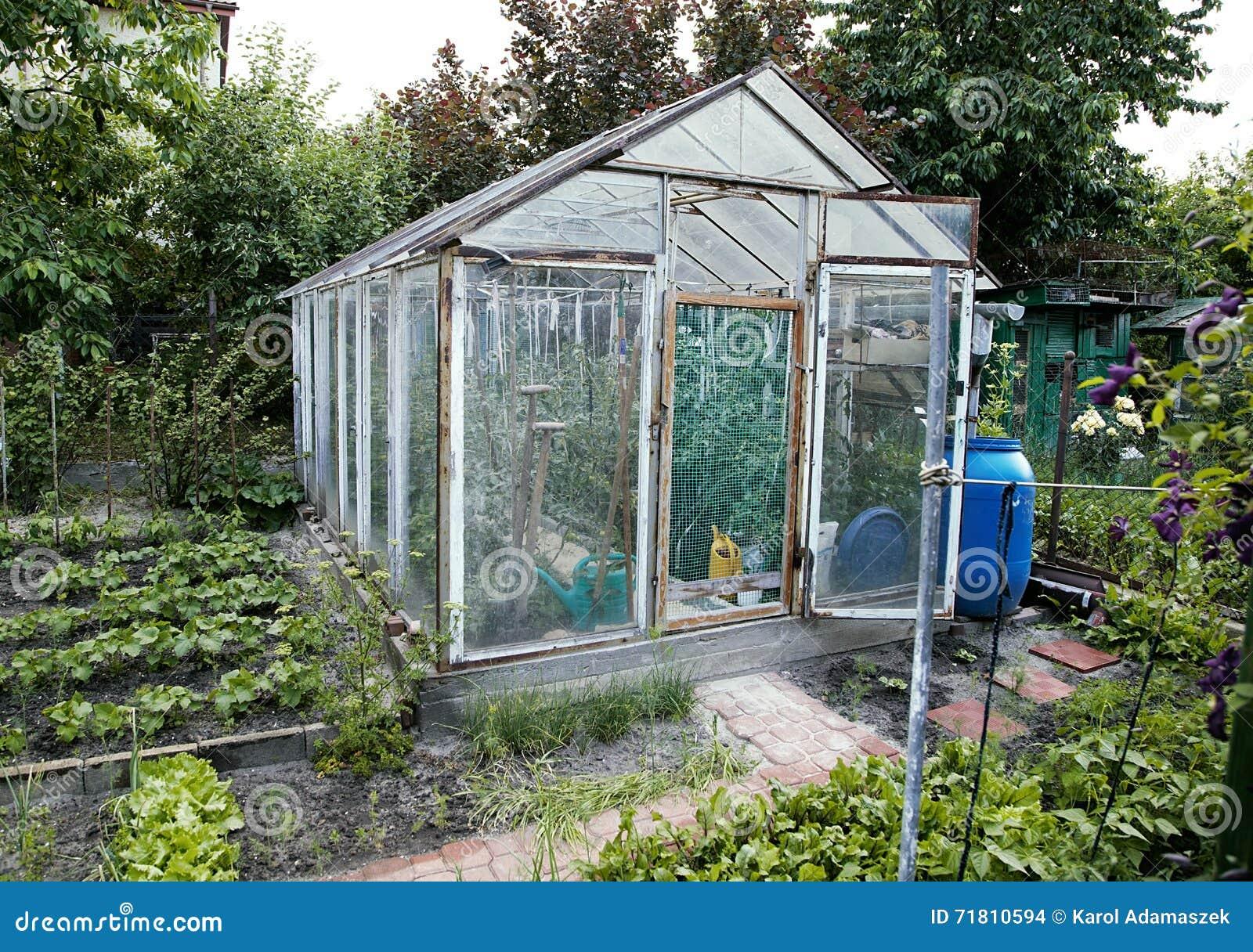 serre chaude faite maison de jardin avec le ch ssis de. Black Bedroom Furniture Sets. Home Design Ideas