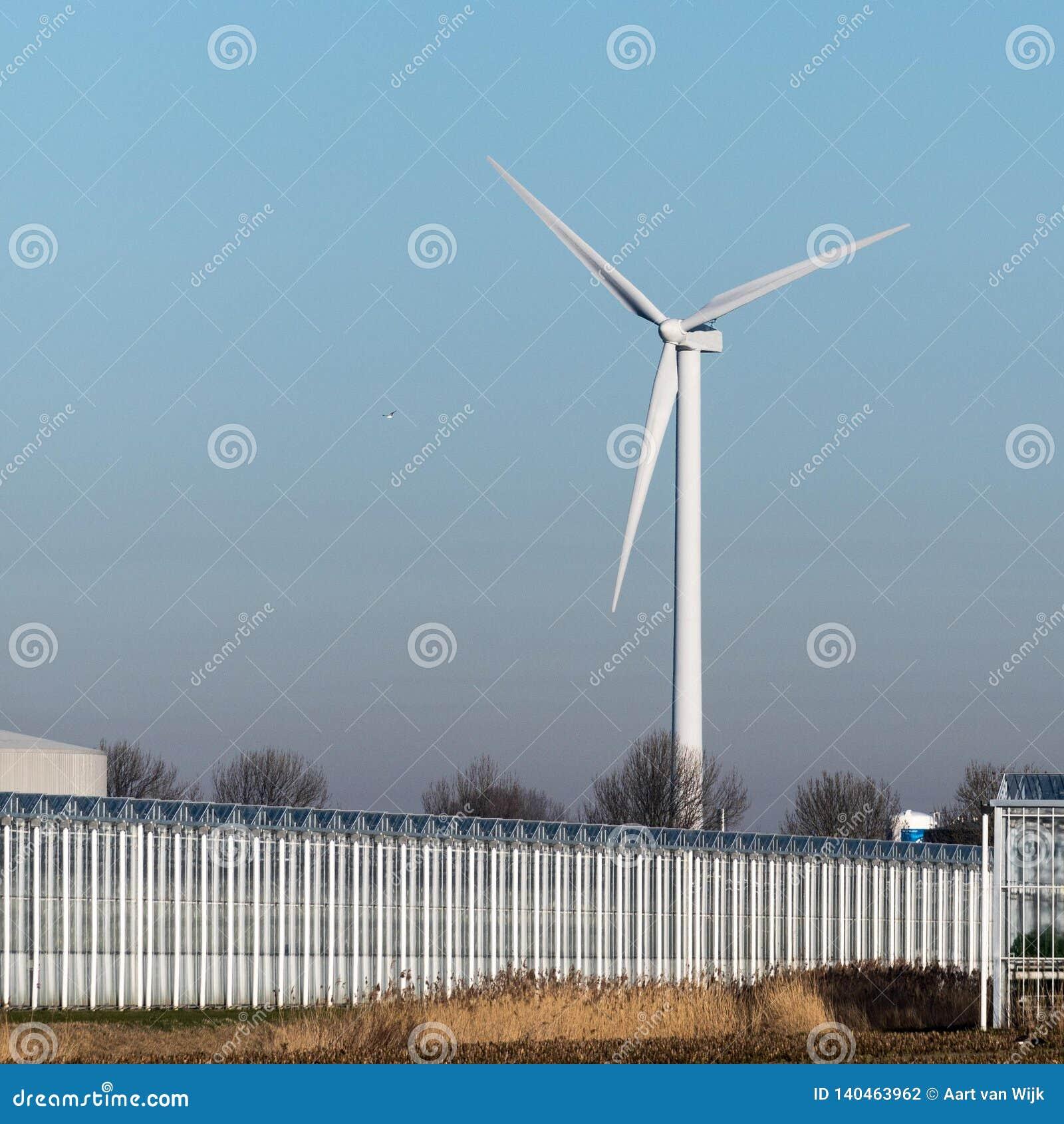 Serre e un mulino a vento contro all inizio di febbraio il cielo