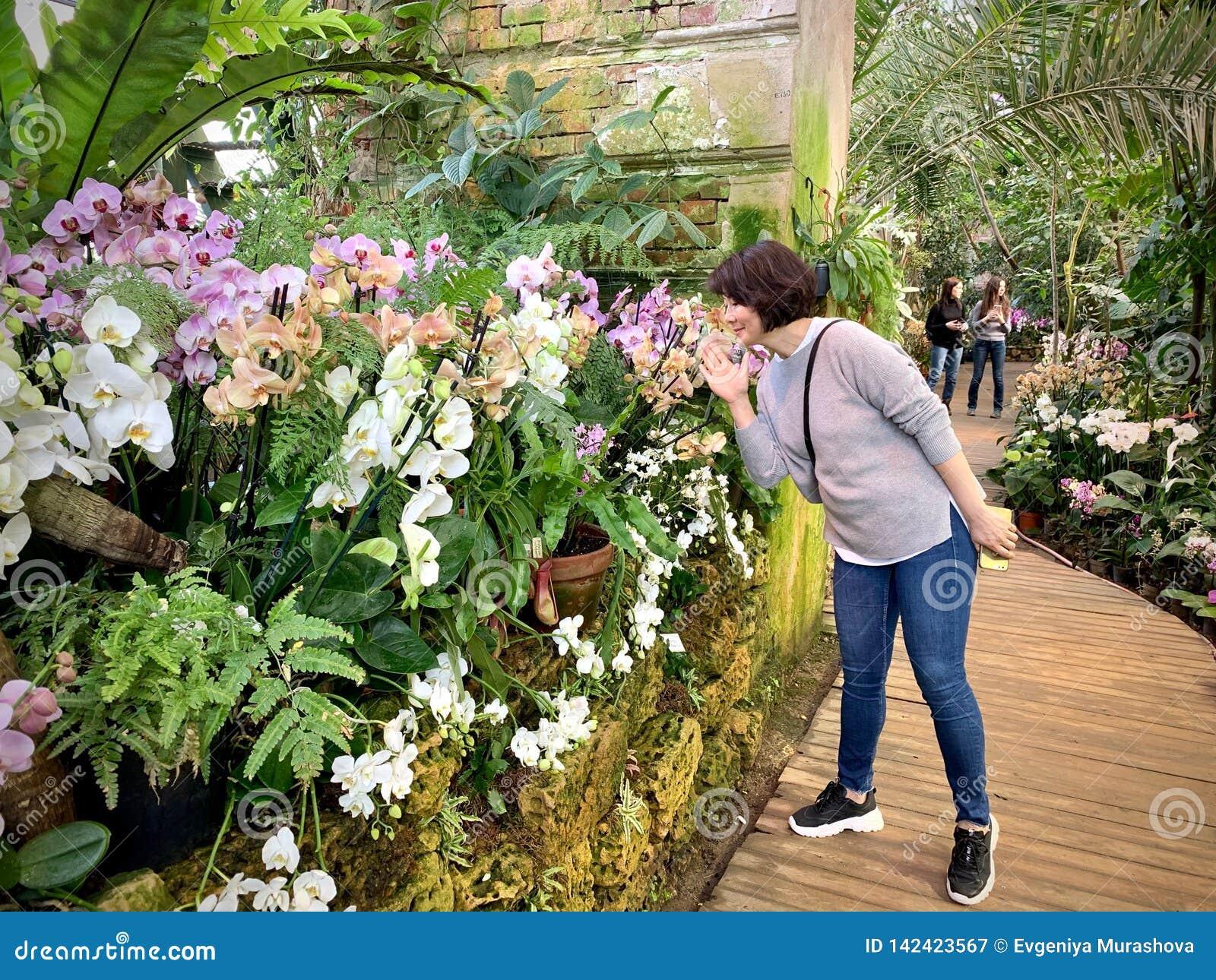 Serre met tropische installaties met bloemen