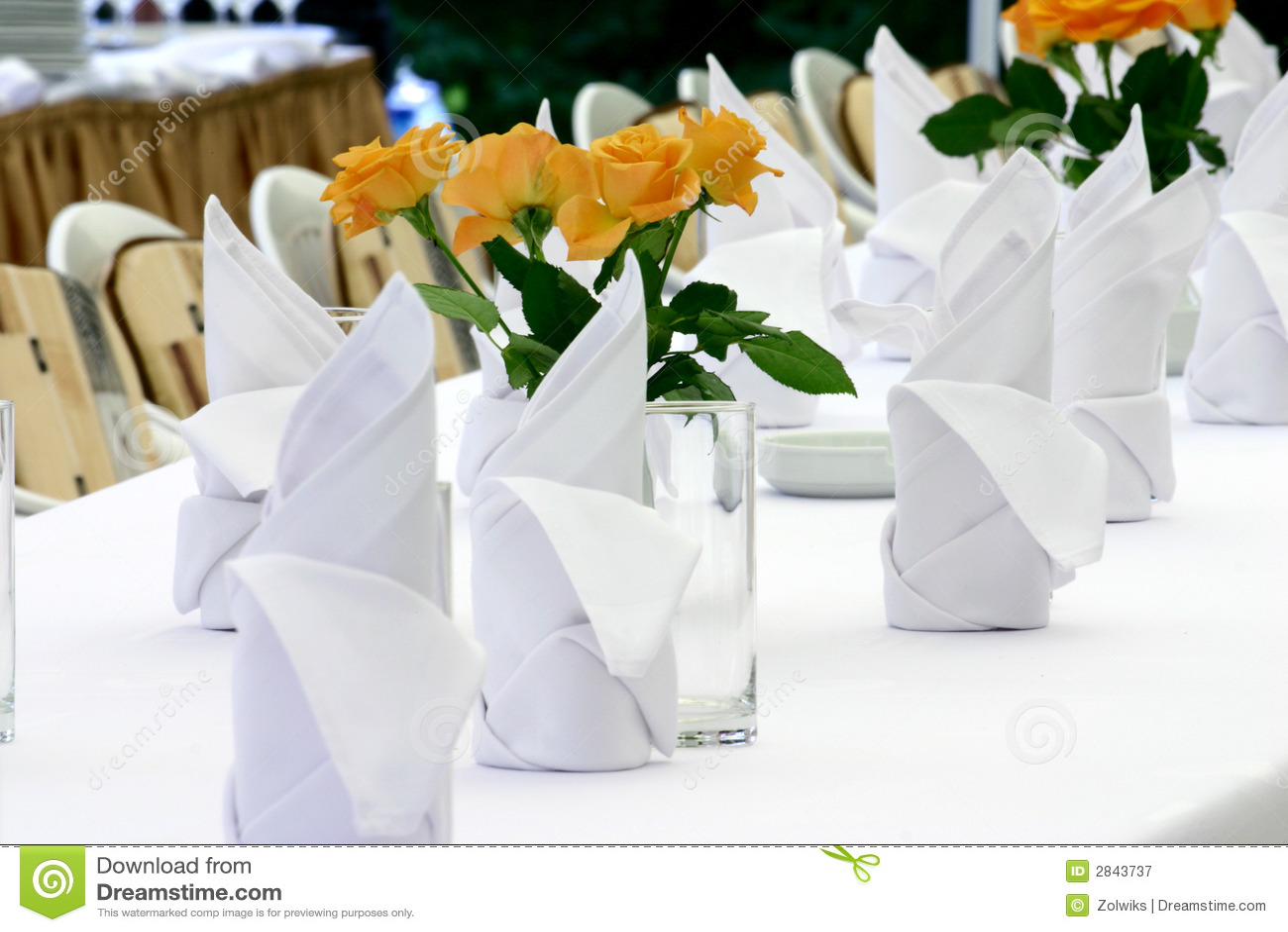 Servietten Und Rosen Stockbild Bild Von Blume Dekoration 2843737