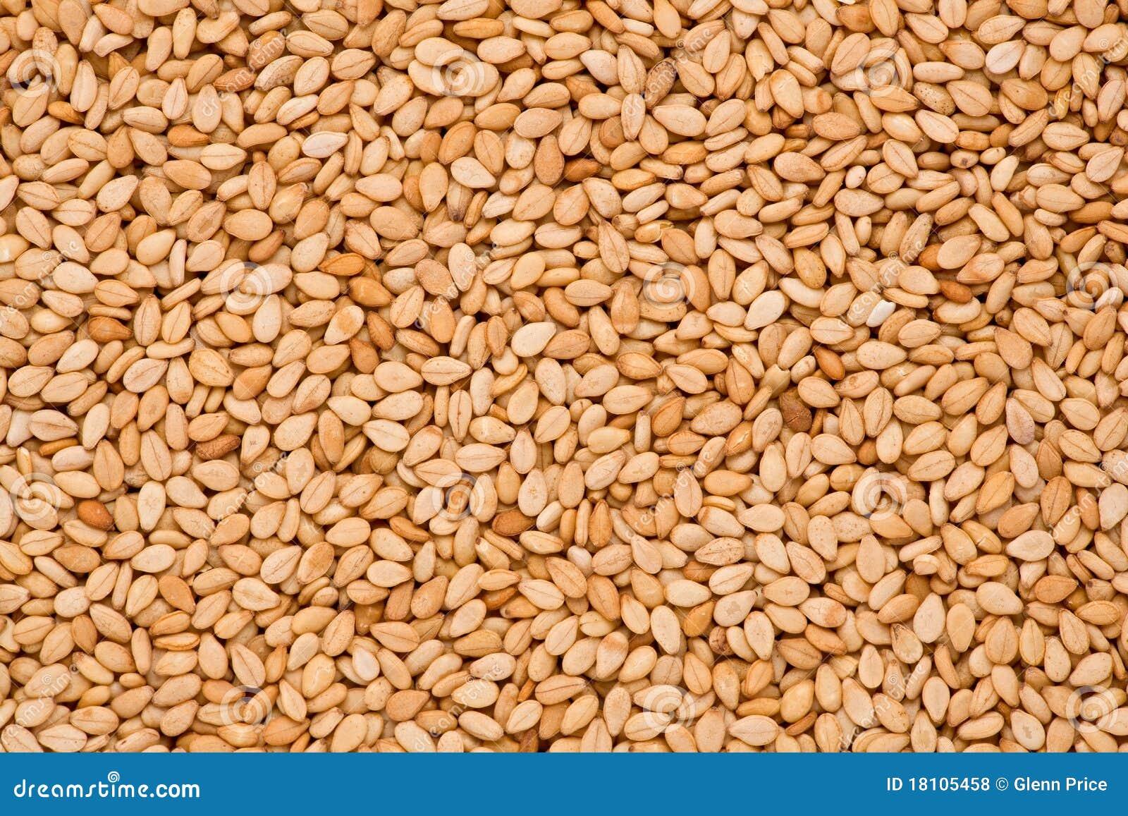 Sesame Seeds  Sesamum ...