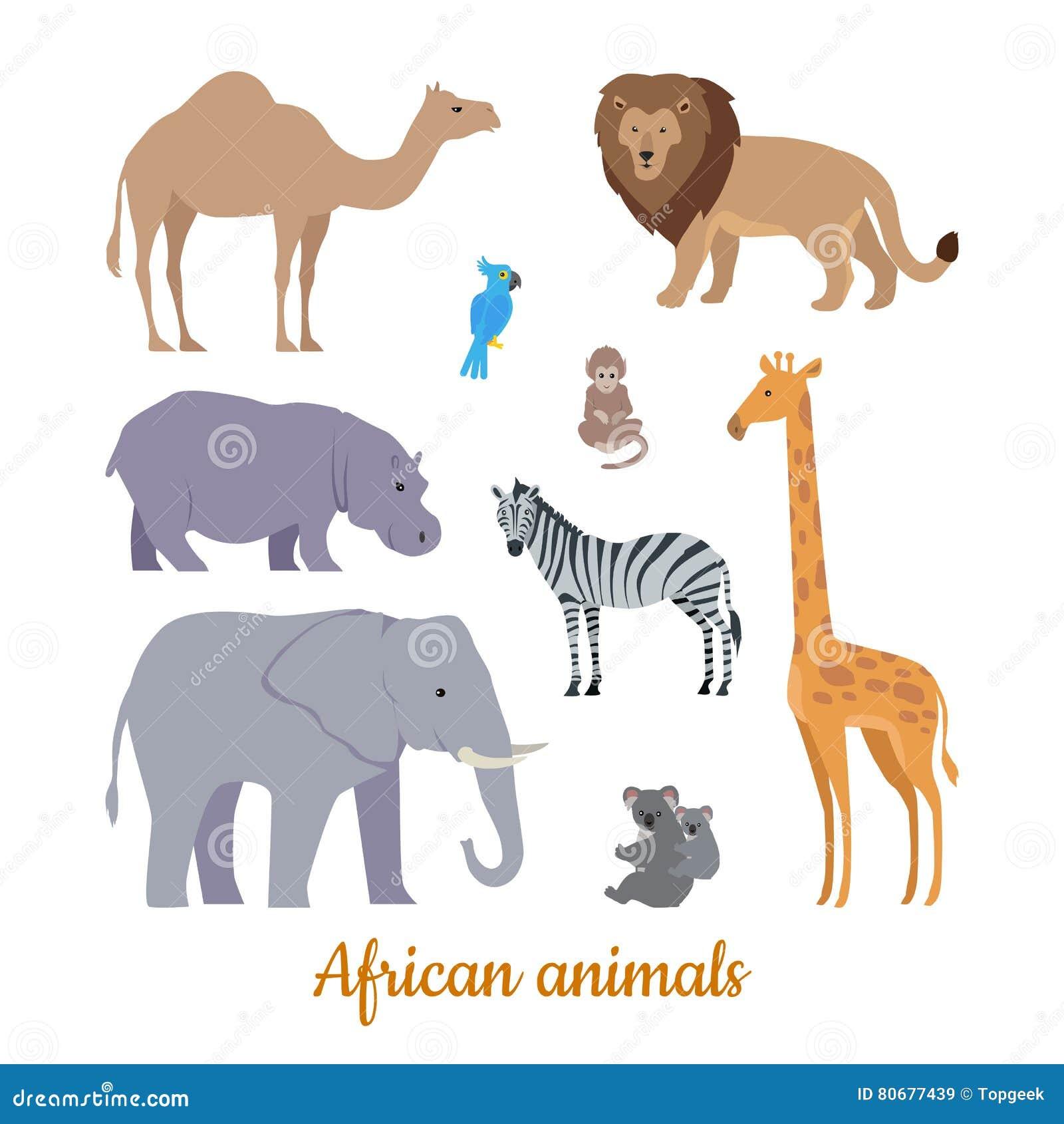 Set Afrykańskich zwierząt projekta Płaskie ilustracje