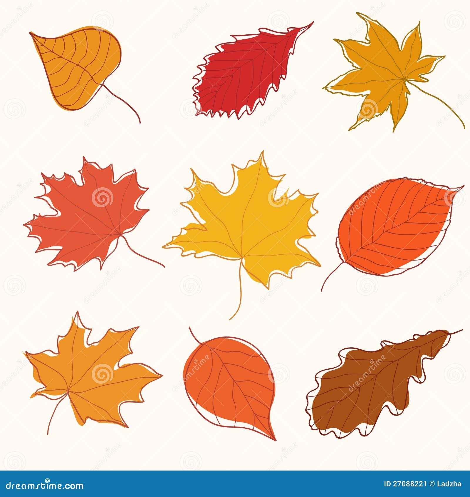 Set Of Autumn Doodle Leaves Stock Vector Illustration Of Botany Element 27088221