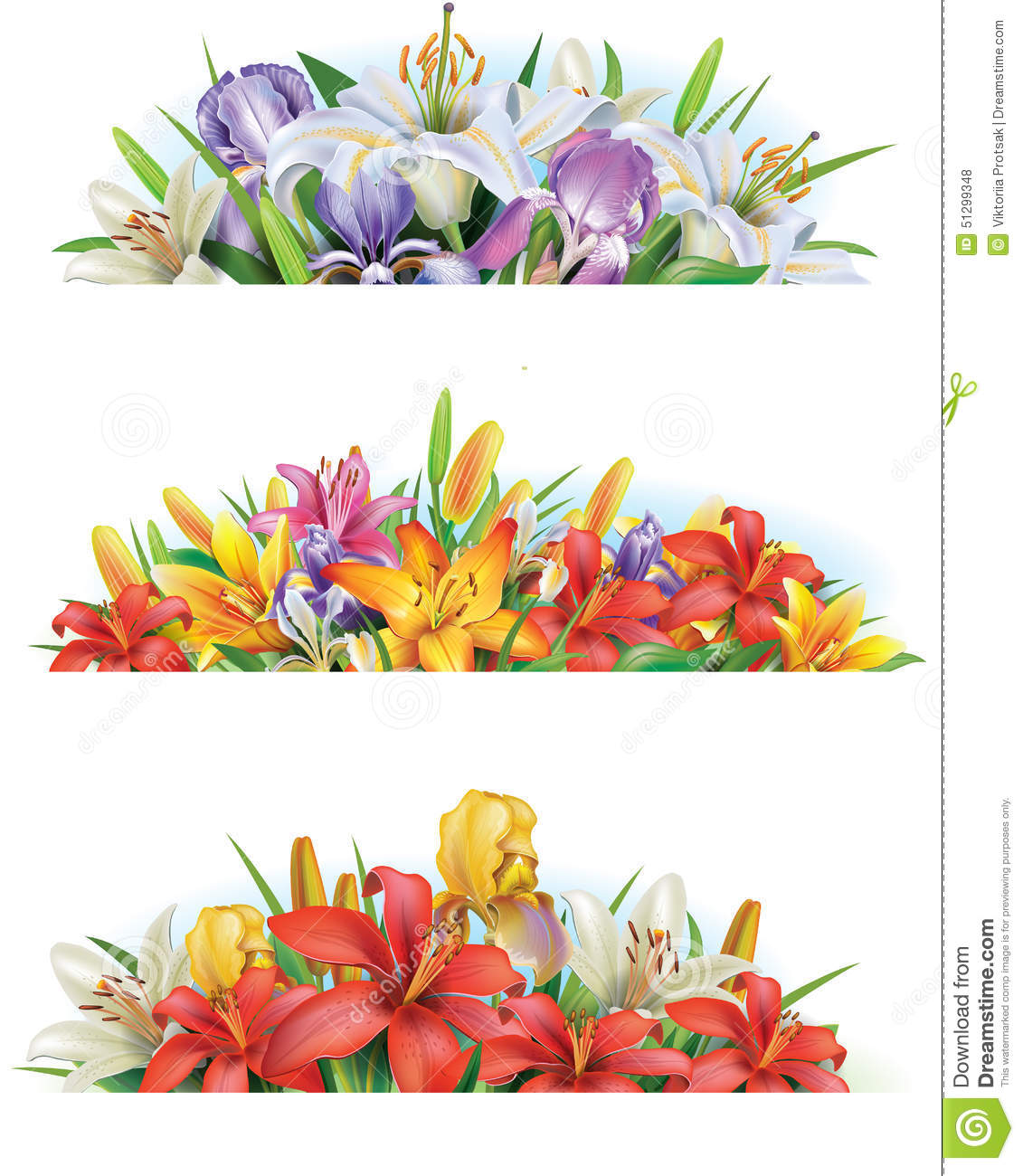 Download Set banners with flowers stock vector. Illustration of arrangement - 51299348