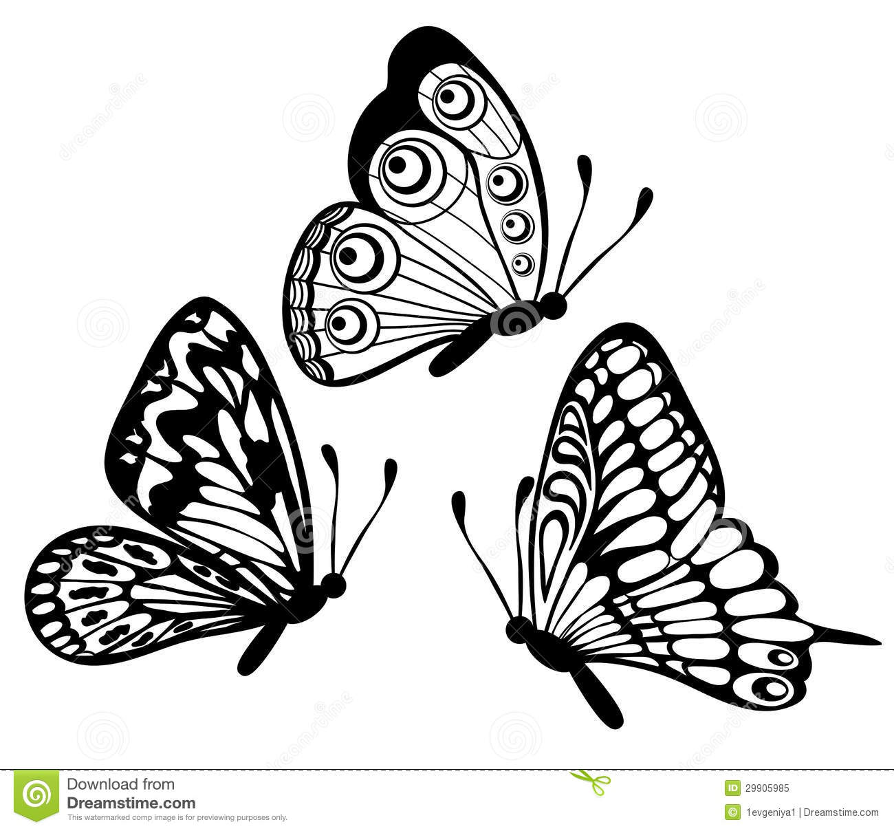 Set of black and white butterfly stock vector illustration
