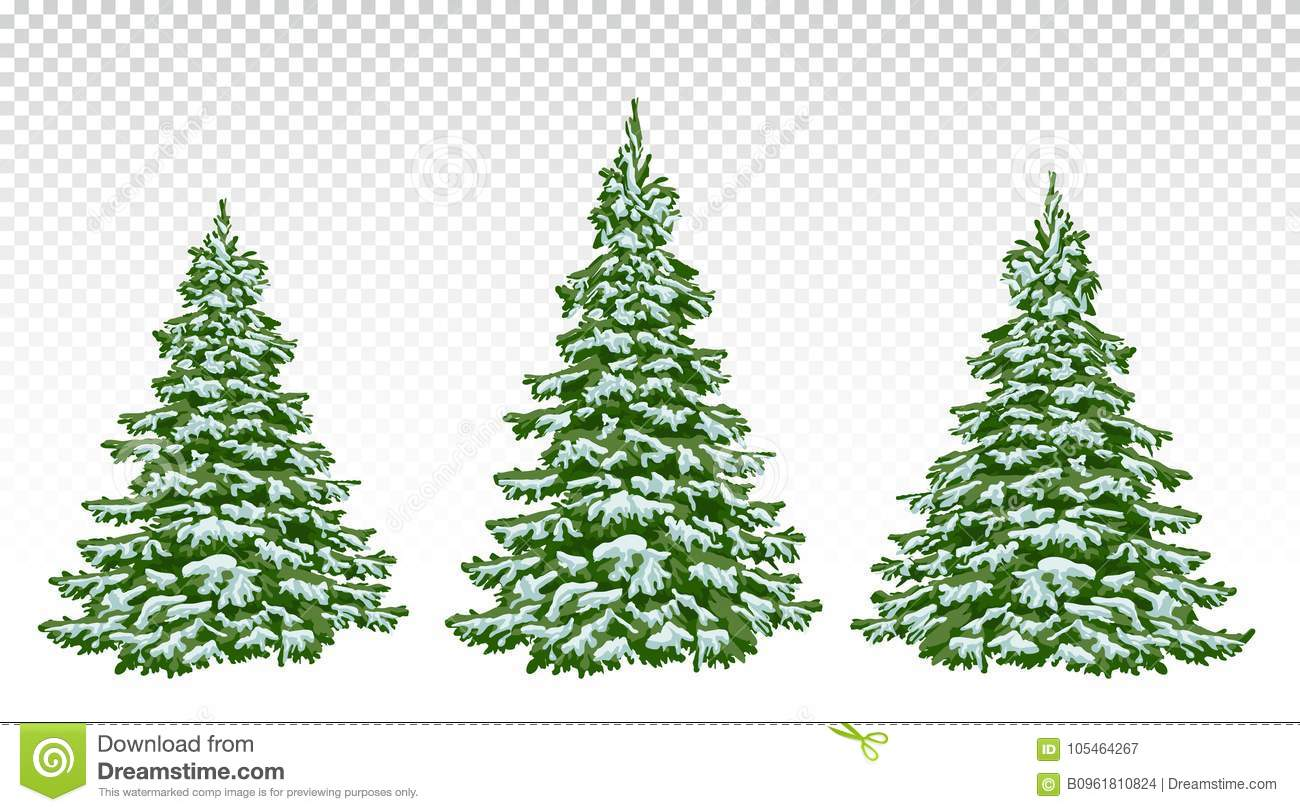 Set Of Beautiful Christmas Trees In The Snow. Christmas. Winter ...