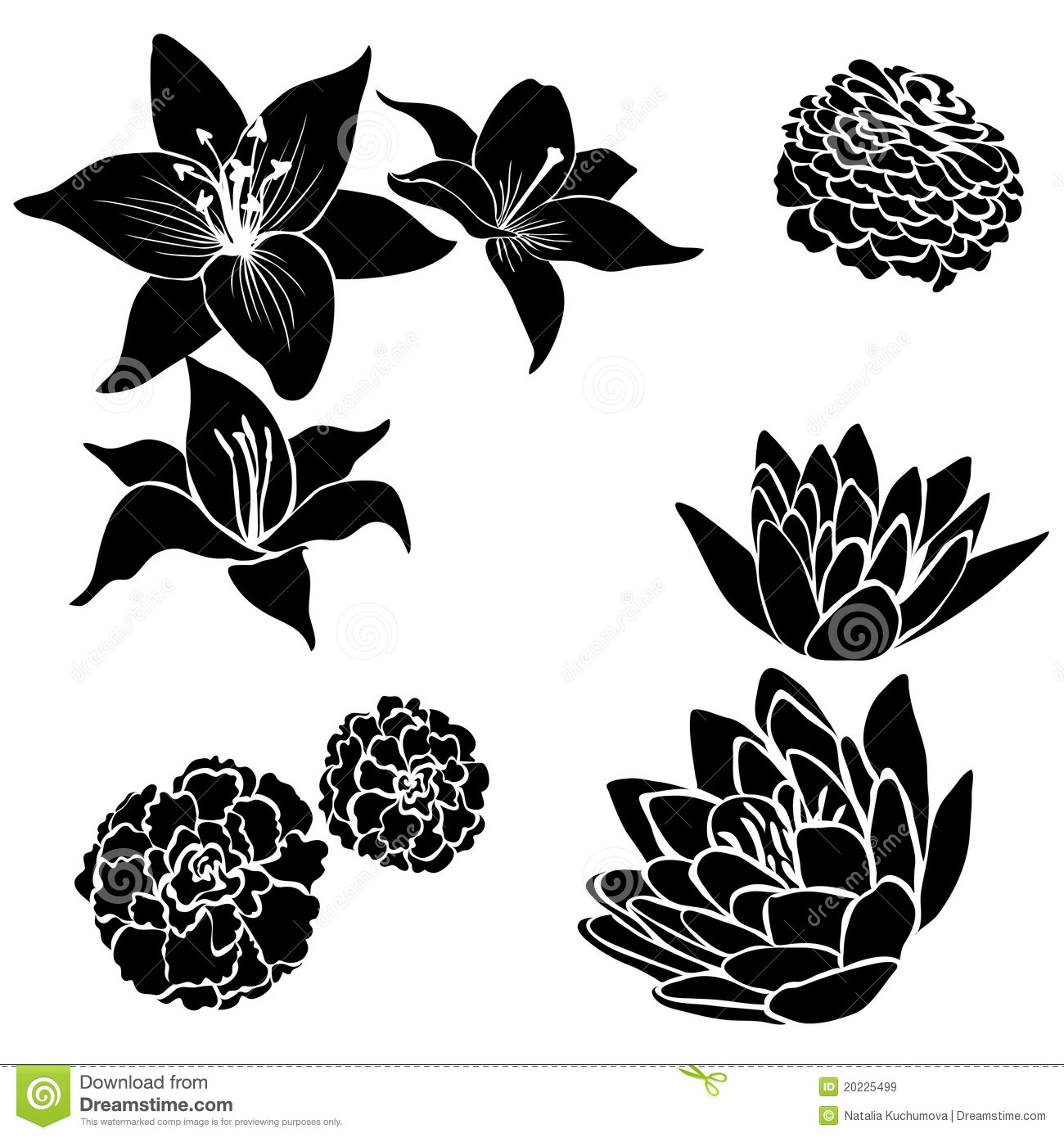 Set Black Flower Design Elements Royalty Free Stock Image