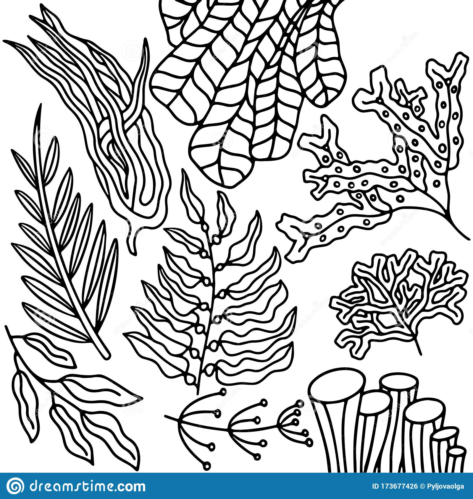 New Coloring | Ocean Plants Coloring Pages Free | Kids Coloring | 1689x1599