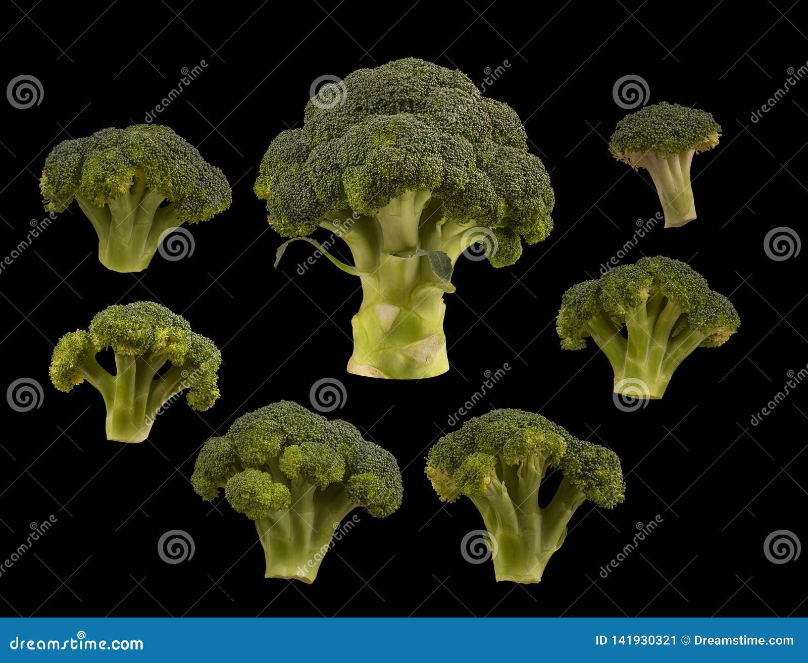 Set broccoli isolated on black background. Flat lay