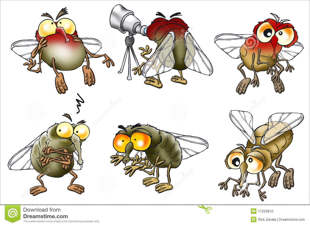 fruit fly clipart - photo #45