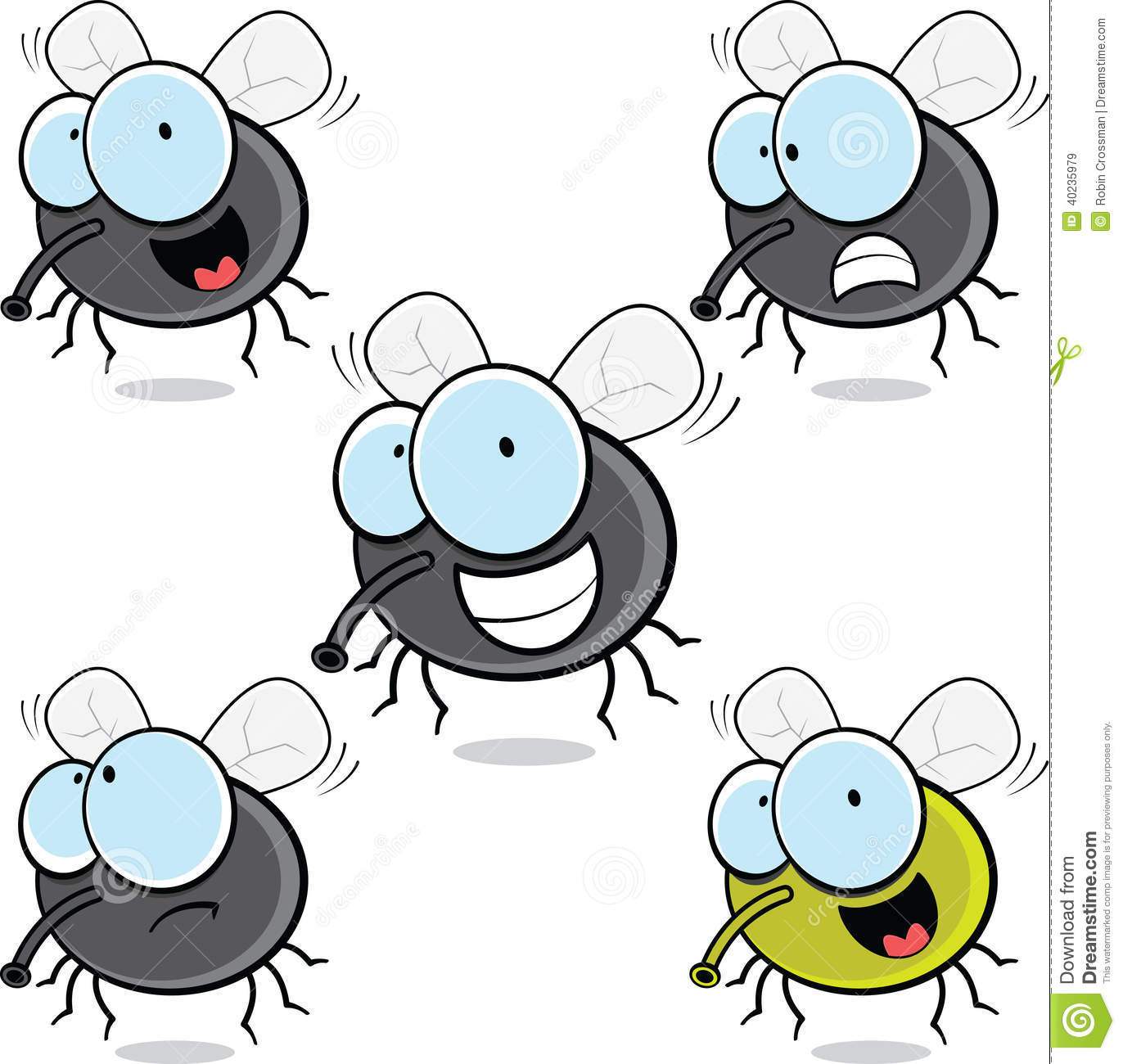 fruit fly clipart - photo #37