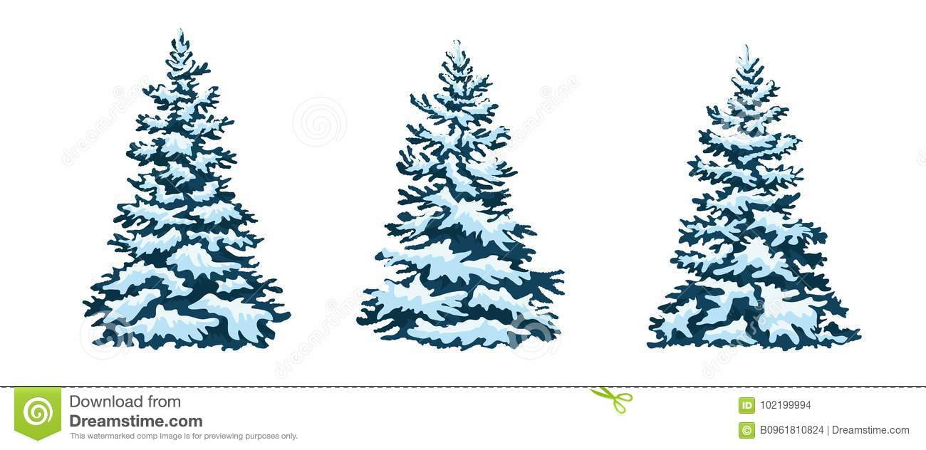Set: Christmas Trees, Isolated. Snow-capped Christmas Tree