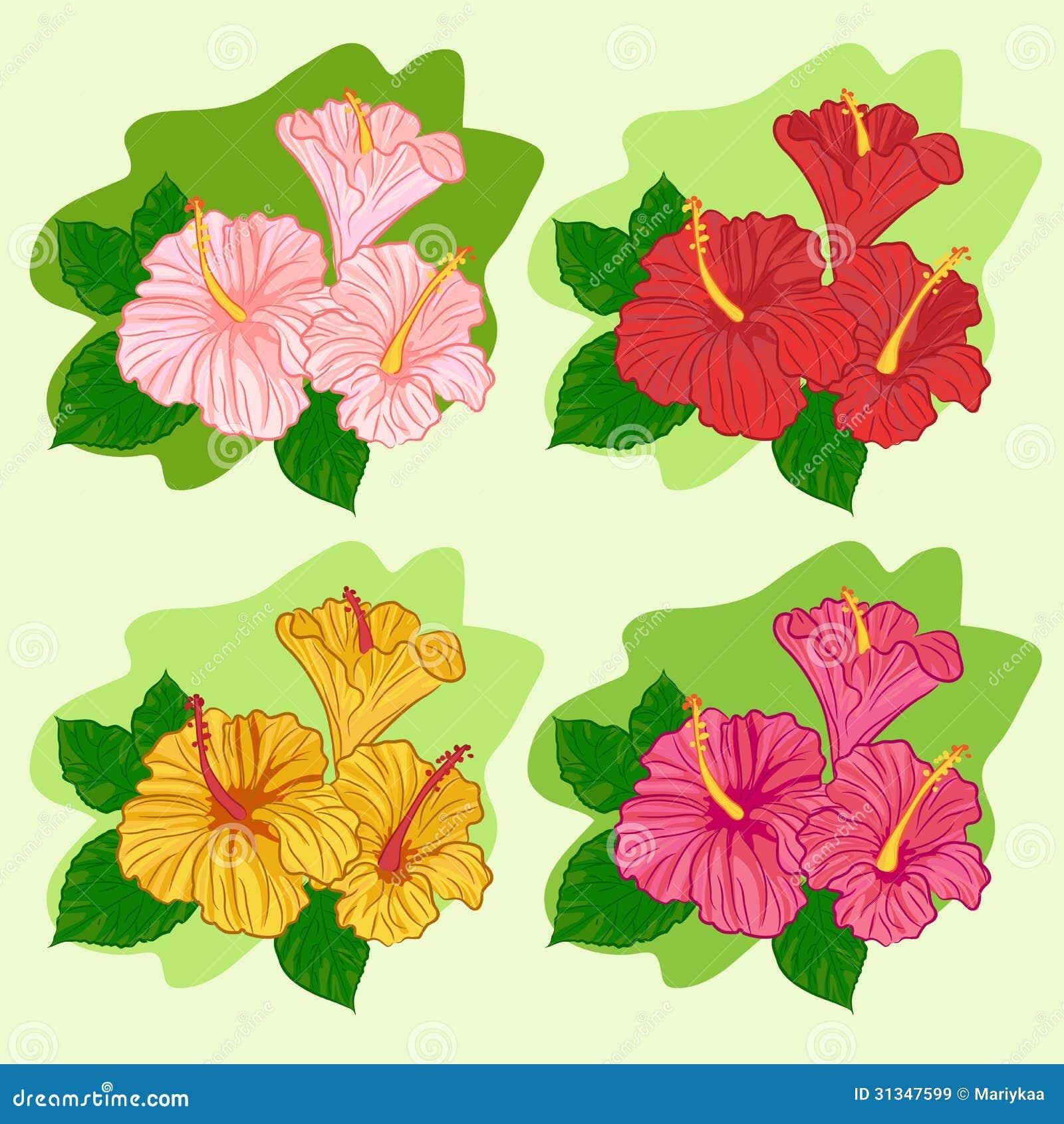 free vector graphic hibiscus - photo #32