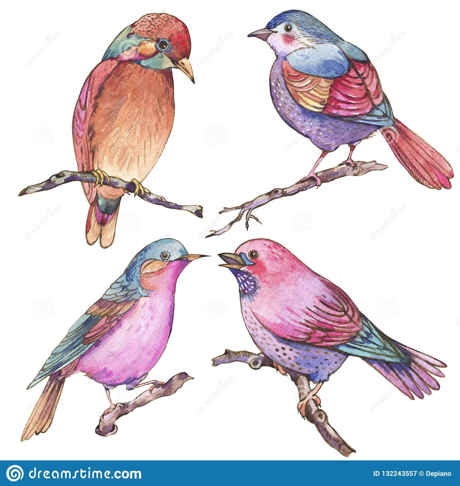 Set of colorful watercolors birds isolated on white background