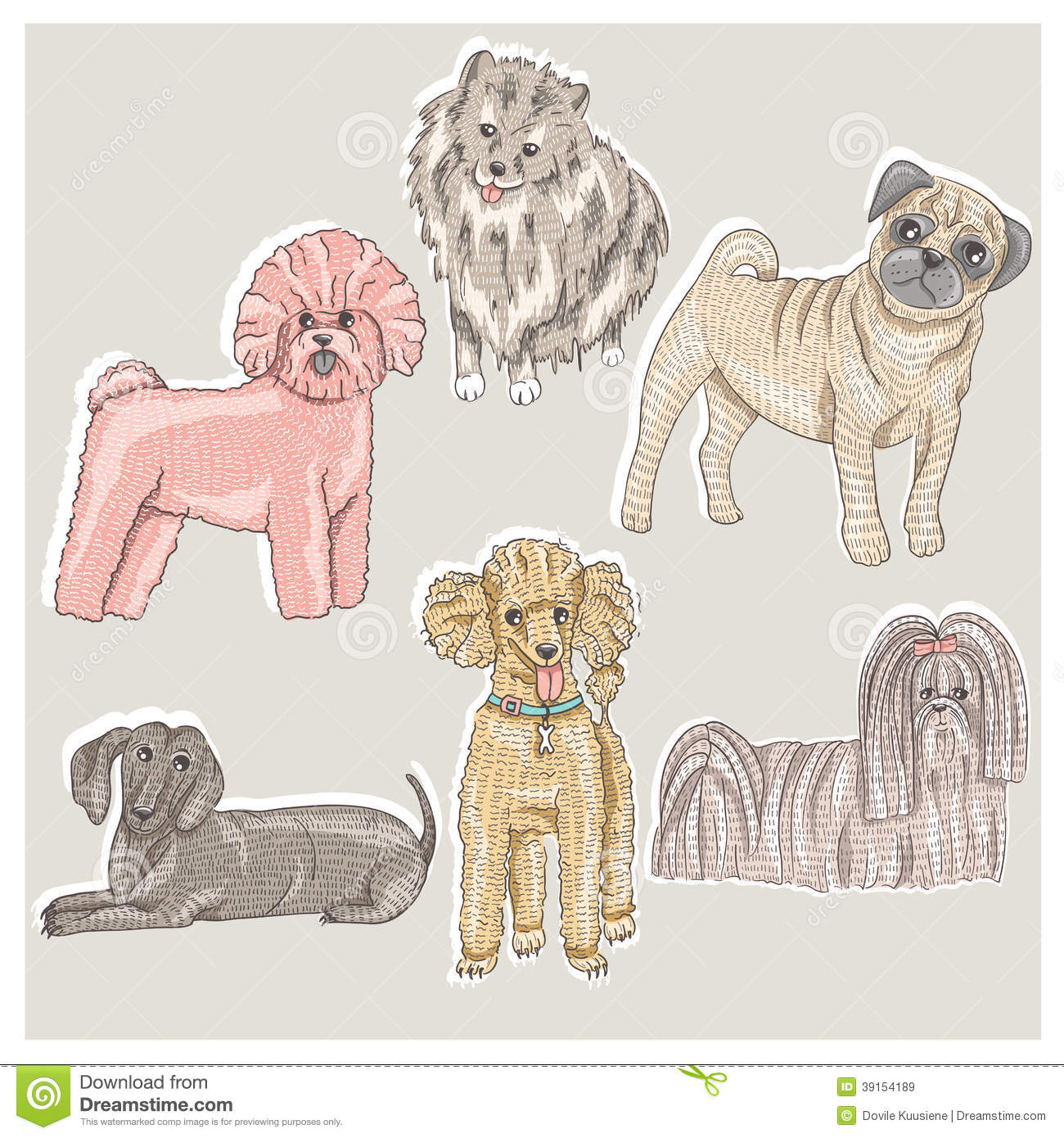 Set Of Cute Little Breed Dogs Stock Vector Illustration Of Character Collection 39154189