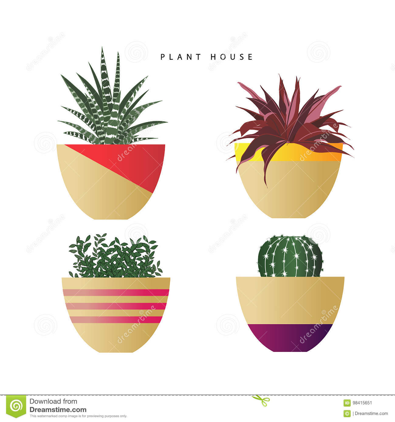 Set of decorative plants in pots of different kind and colors