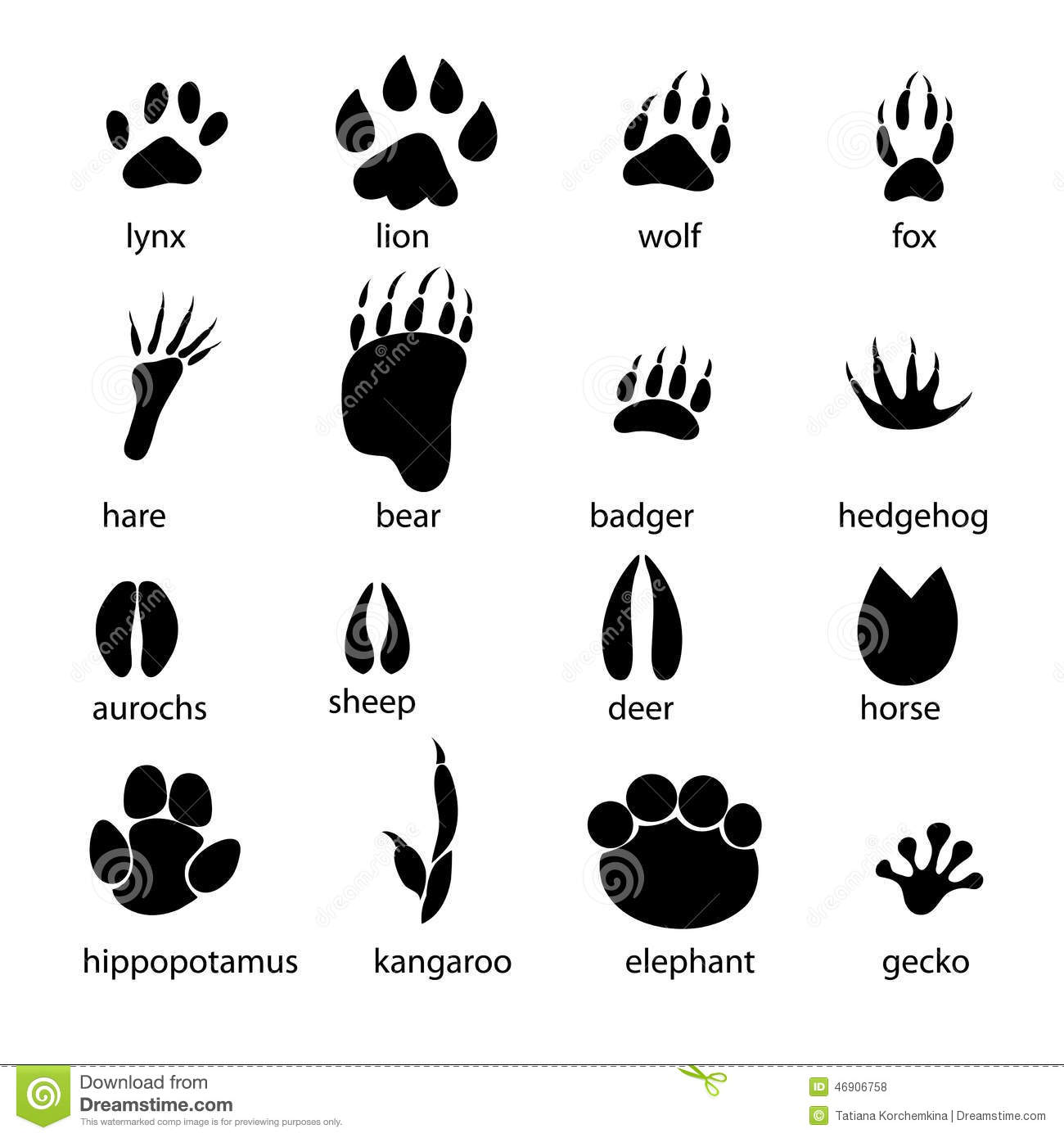 Set Of Different Animal Tracks Stock Vector Image 46906758