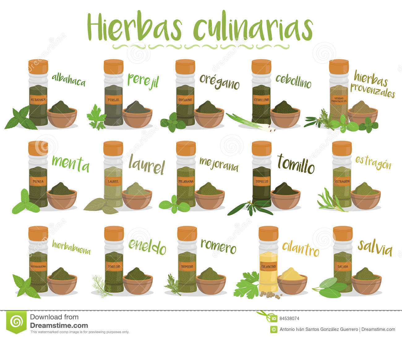 Vector Different Herbs And Spices Vector Illustration ...