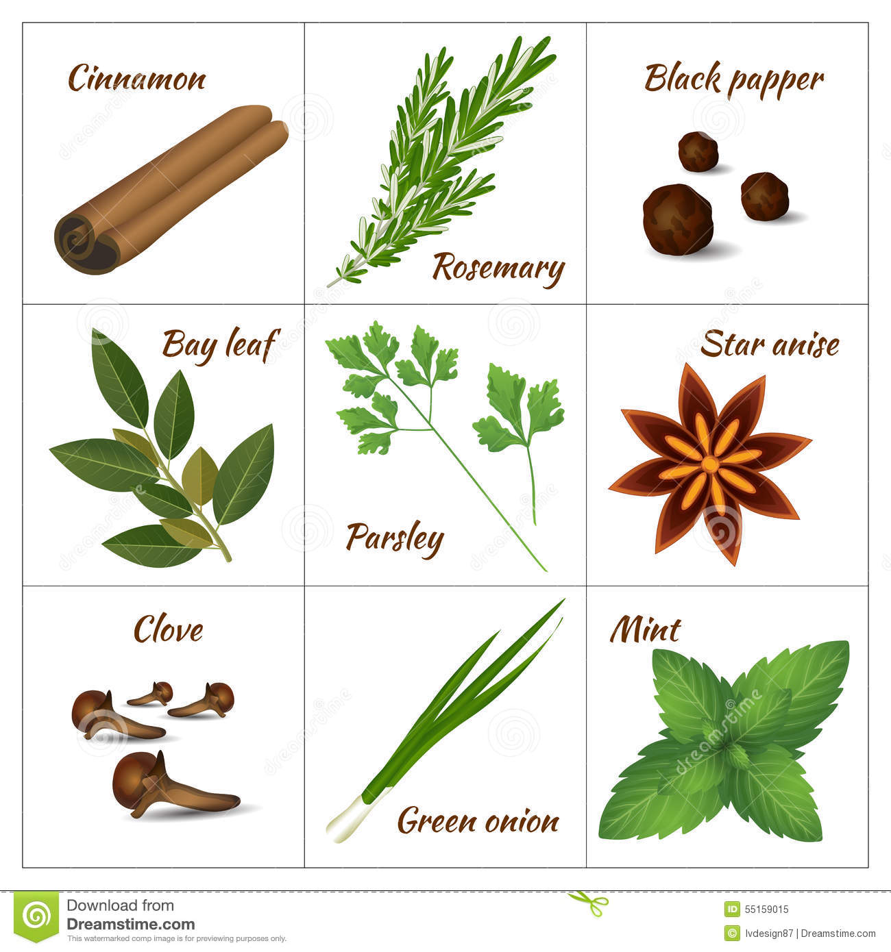 Spices & Herbs, Set. Stock Vector - Image: 85175228