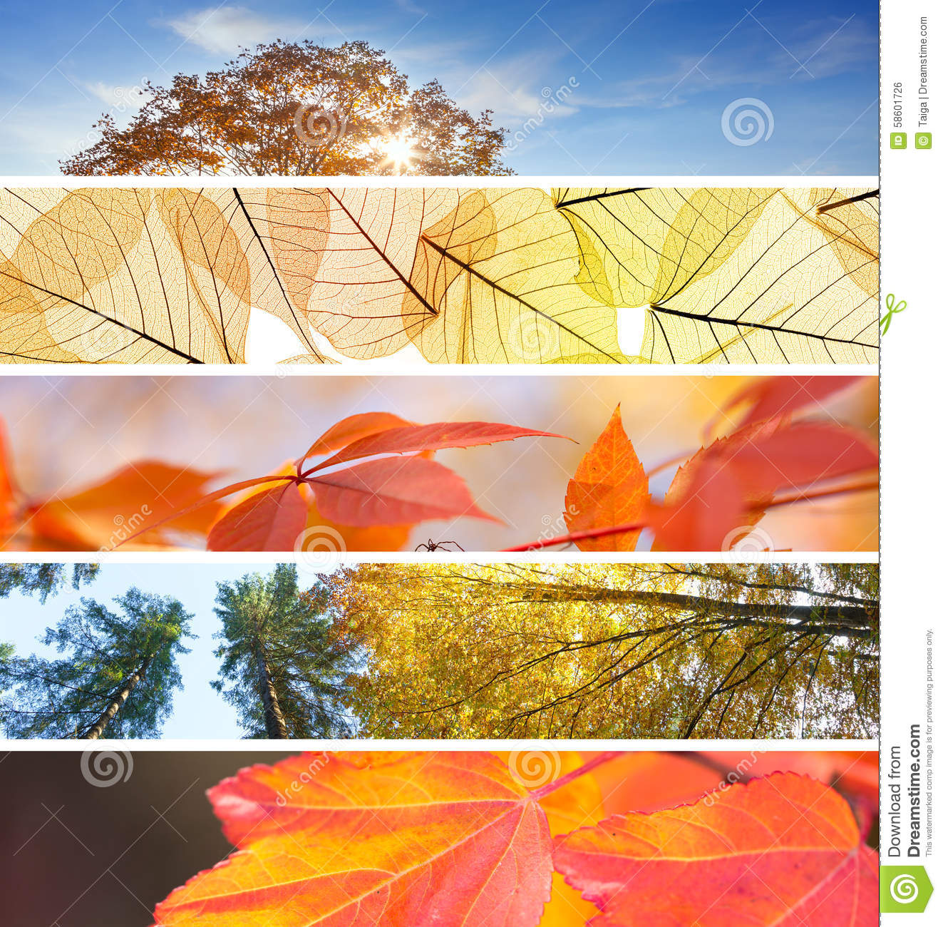 Set Of Different Fall Banners