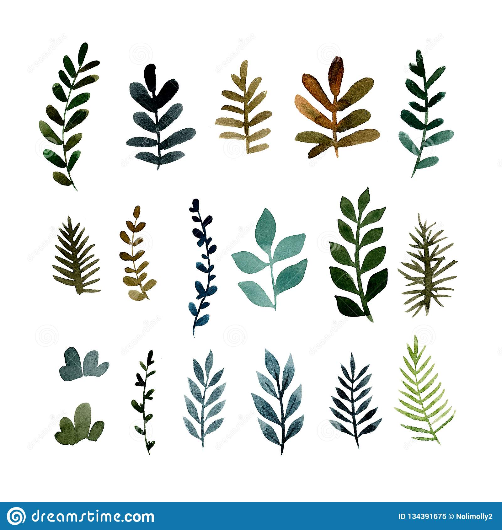 Set Of Different Green Branches Of Plants Stock Illustration