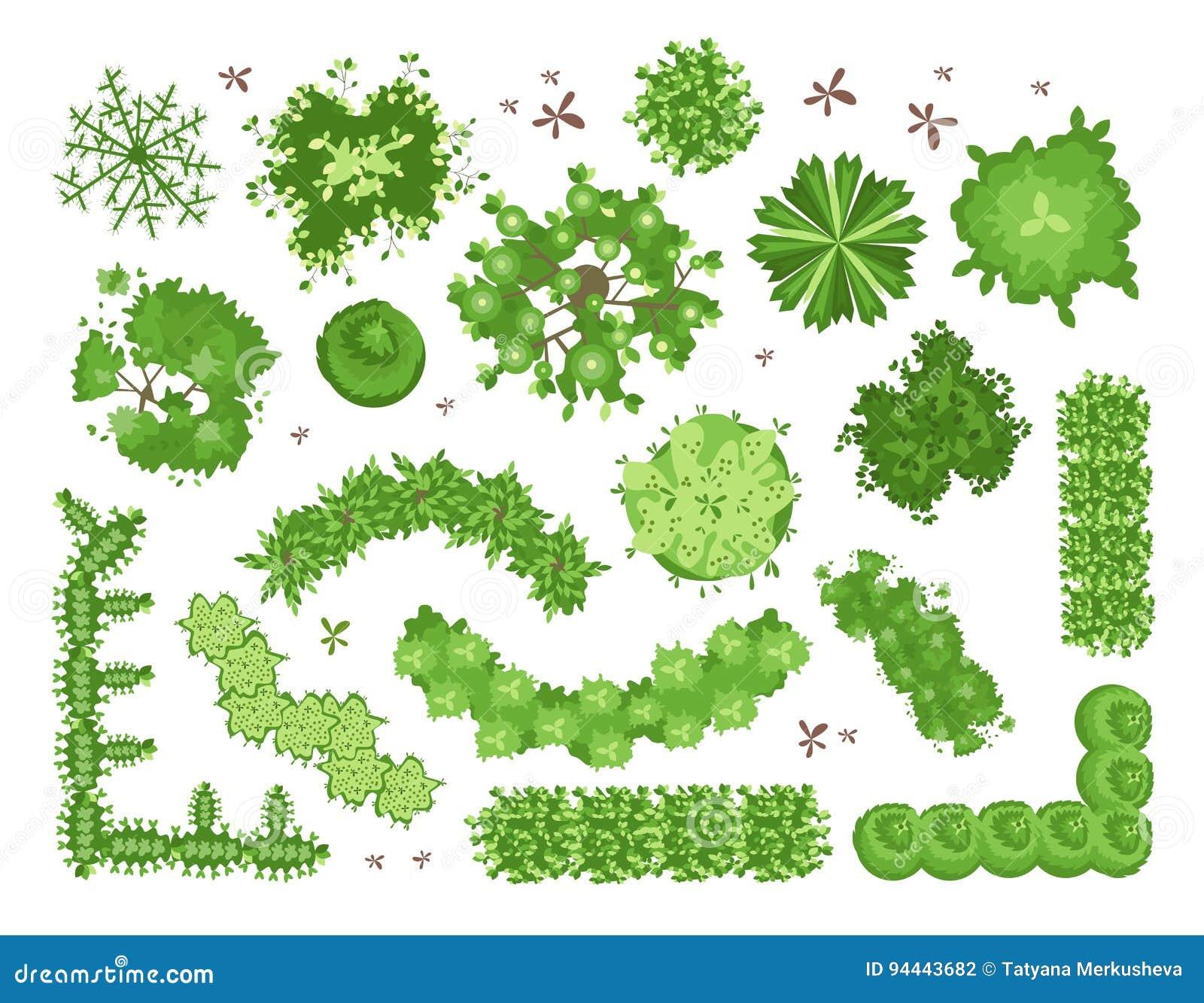 Download Set Of Different Green Trees Shrubs Hedges Top View For Landscape Design