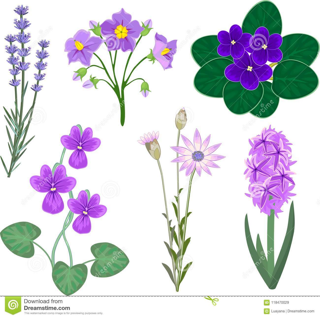 Set Of Different Plants With Purple Flowers Stock Vector
