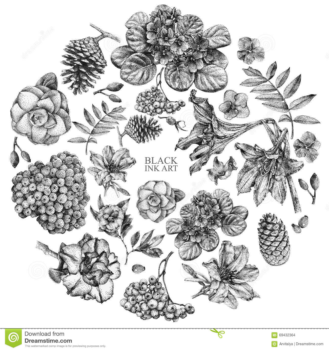 Set Of Different Spring Flowers And Plants Drawn By Hand Stock