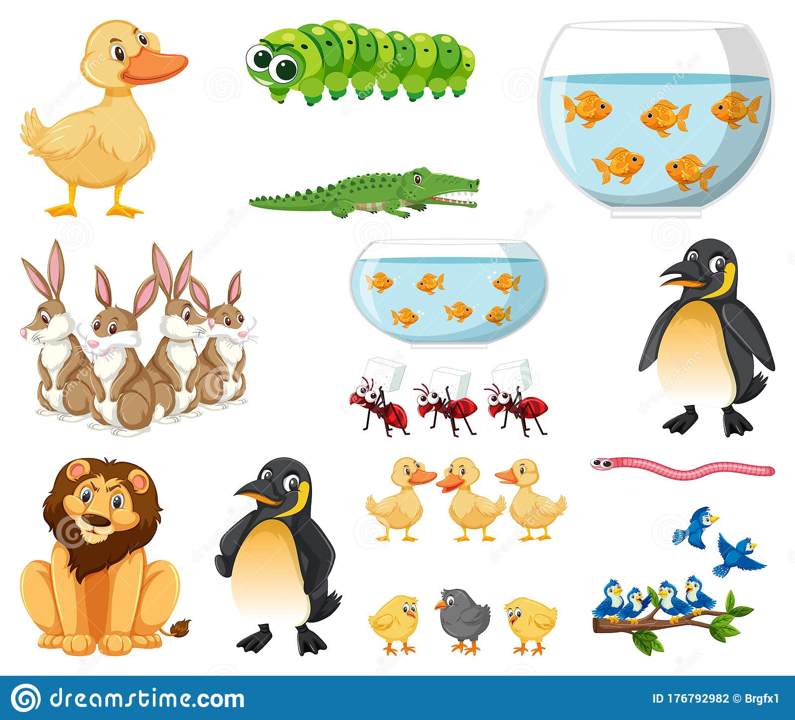 Group Different Types Animals Stock Illustrations – 50 Group Different  Types Animals Stock Illustrations, Vectors & Clipart - Dreamstime