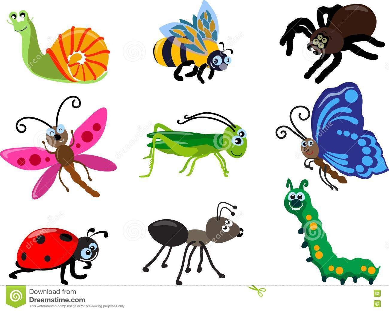 Set Of Different Types Of Insects Isolated On White Background In ...