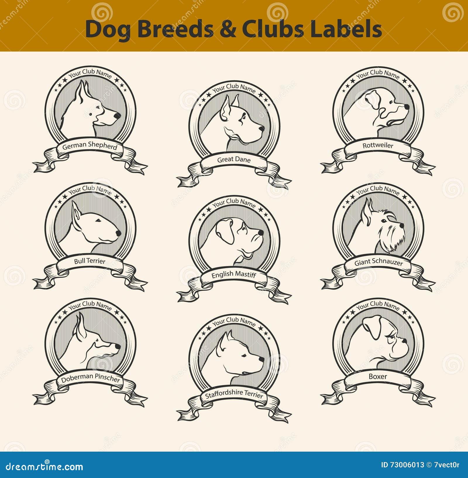 Staffordshire Bull Terrier Dog Silhouette Cartoon Vector ...