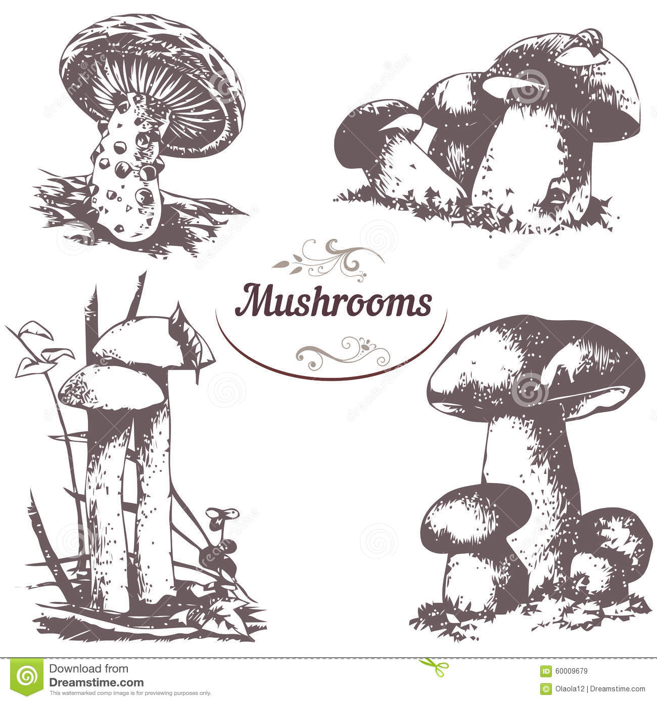 how to draw fungus the numchuck