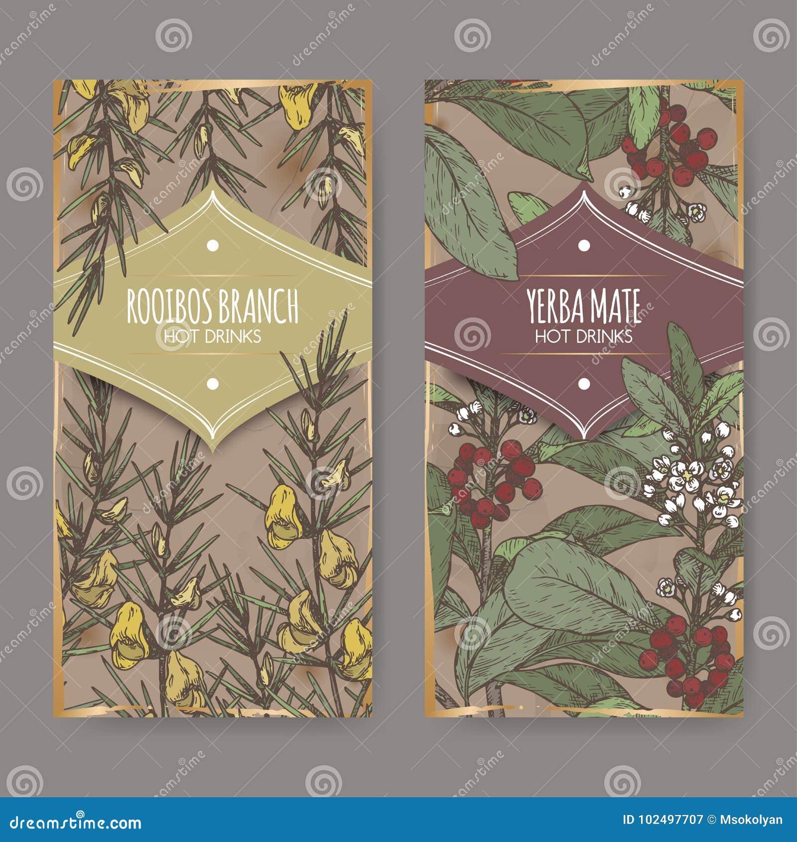 Set dwa kolor etykietki z Rooibos Aspalathus aka linearis, Yerba szturmanu aka ostrokrzewu paraguariensis i rozgałęzia się