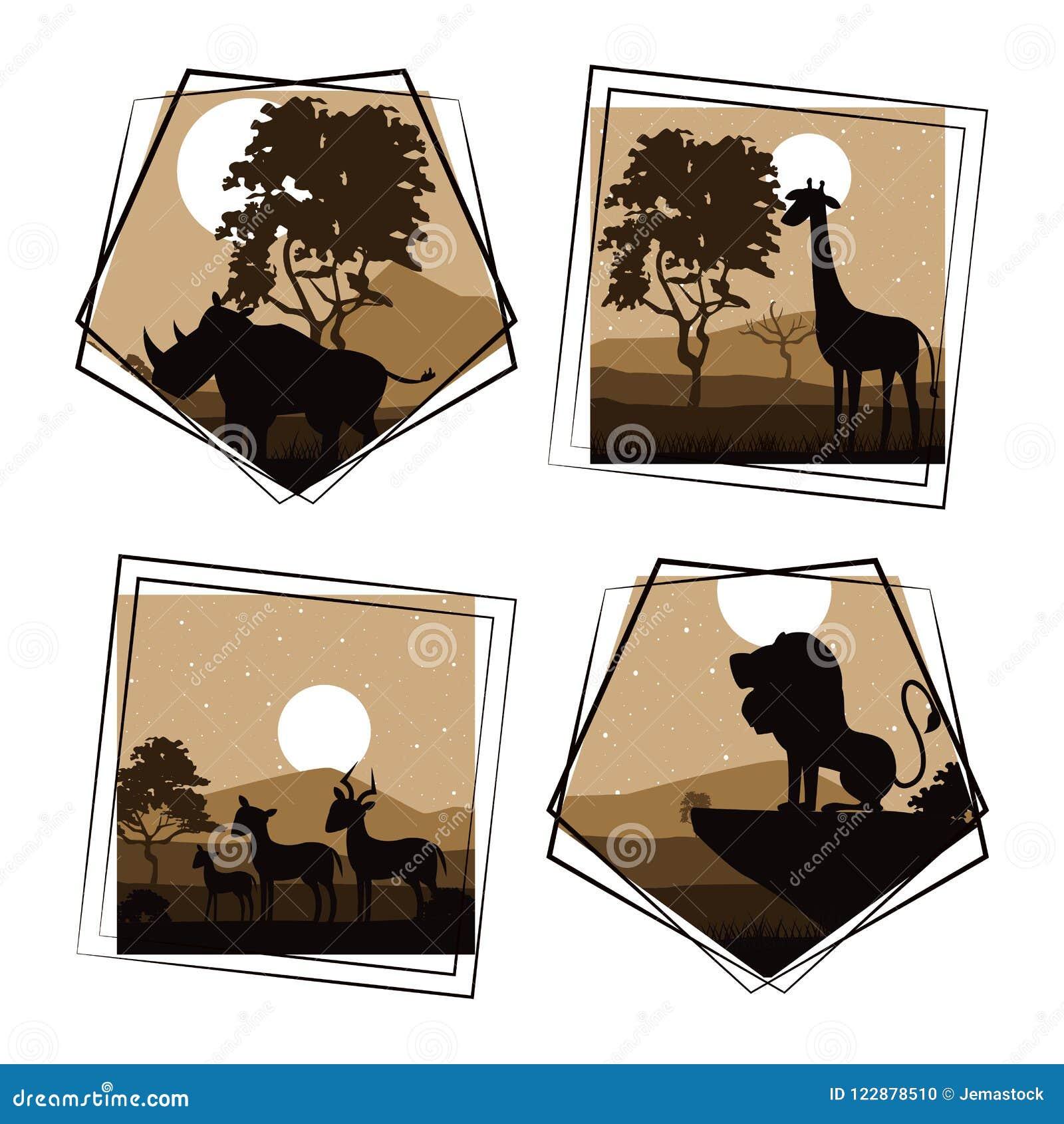 Set dzicy Afrykańscy zwierzęta