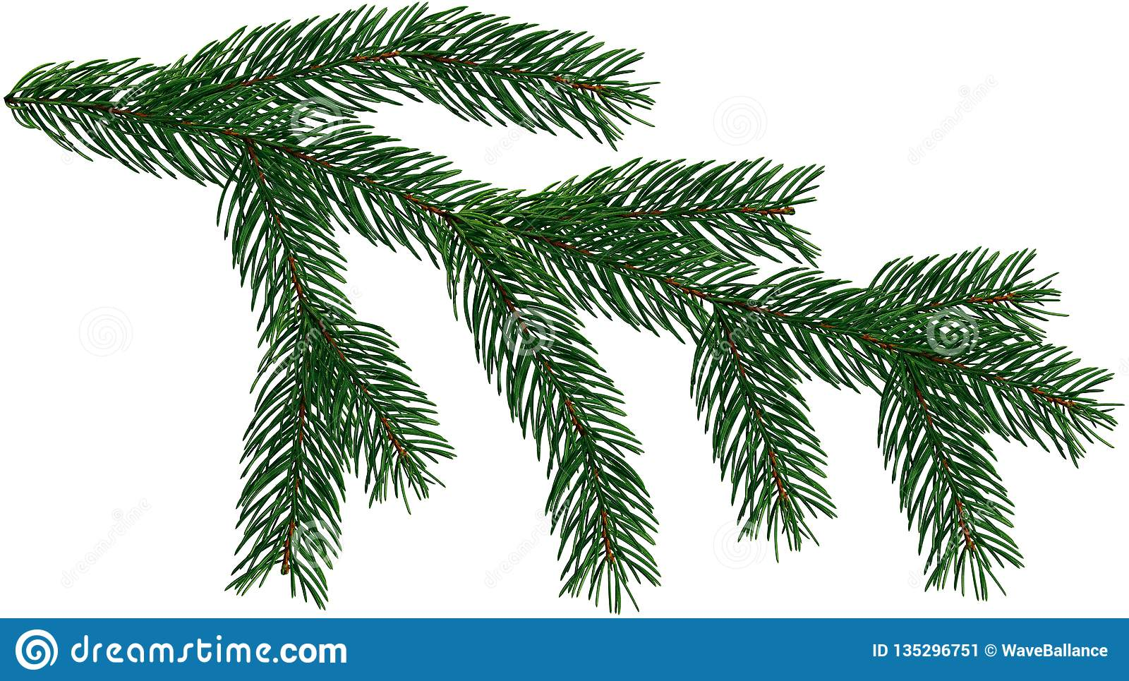 Christmas Branch Png.Large Fir Tree Branch Christmas Tree Is Isolated On A White