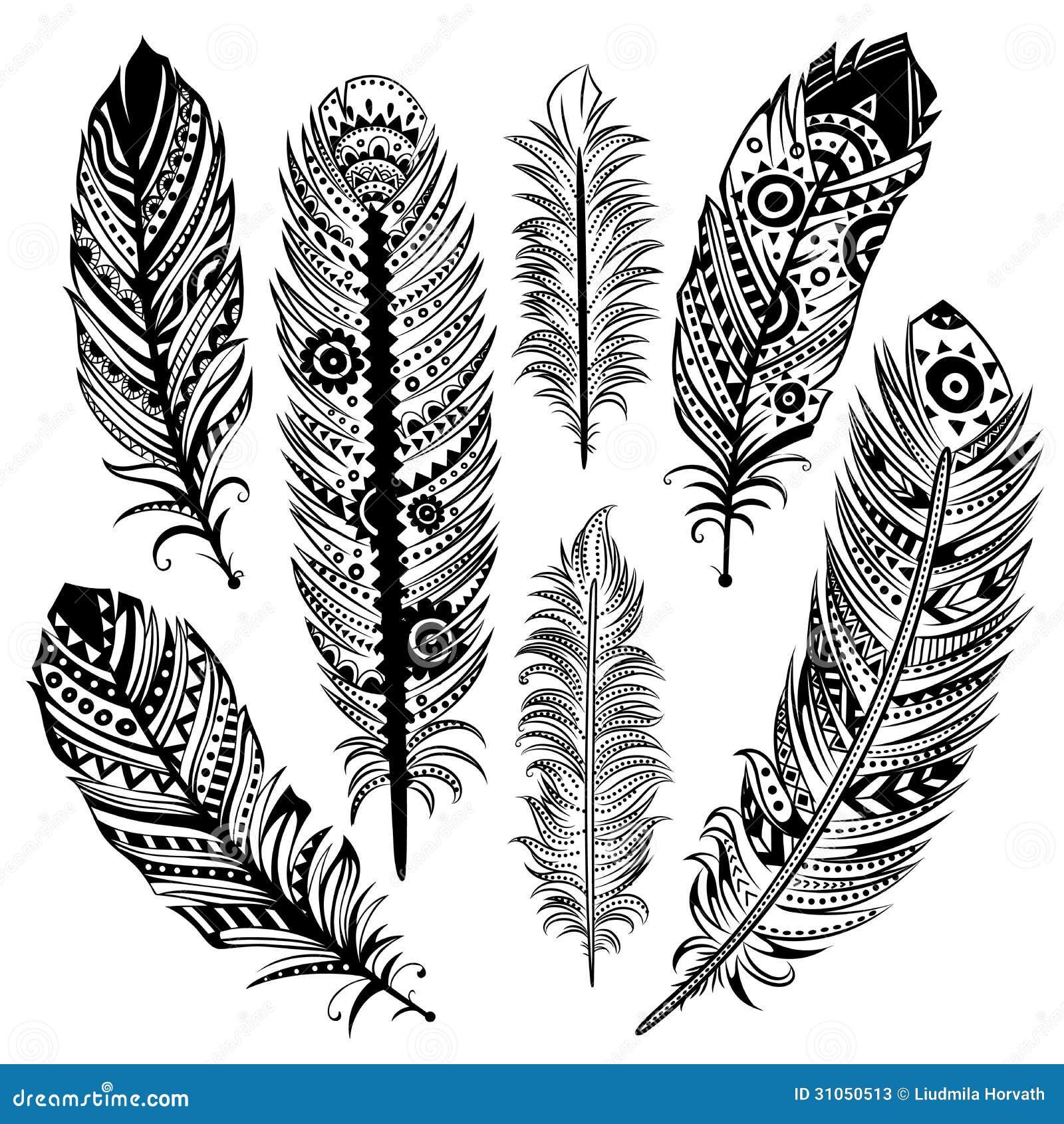 Set Of Ethnic Feathers Stock Photos Image 31050513