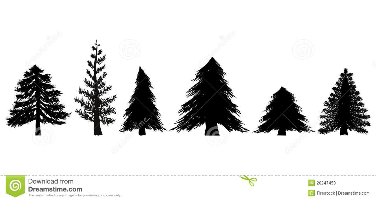 set of evergreen trees stock illustration illustration of alone