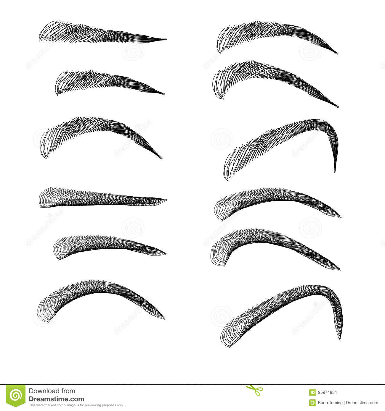 Set Of Eyebrows In Different Shapes And Types Stock Illustration