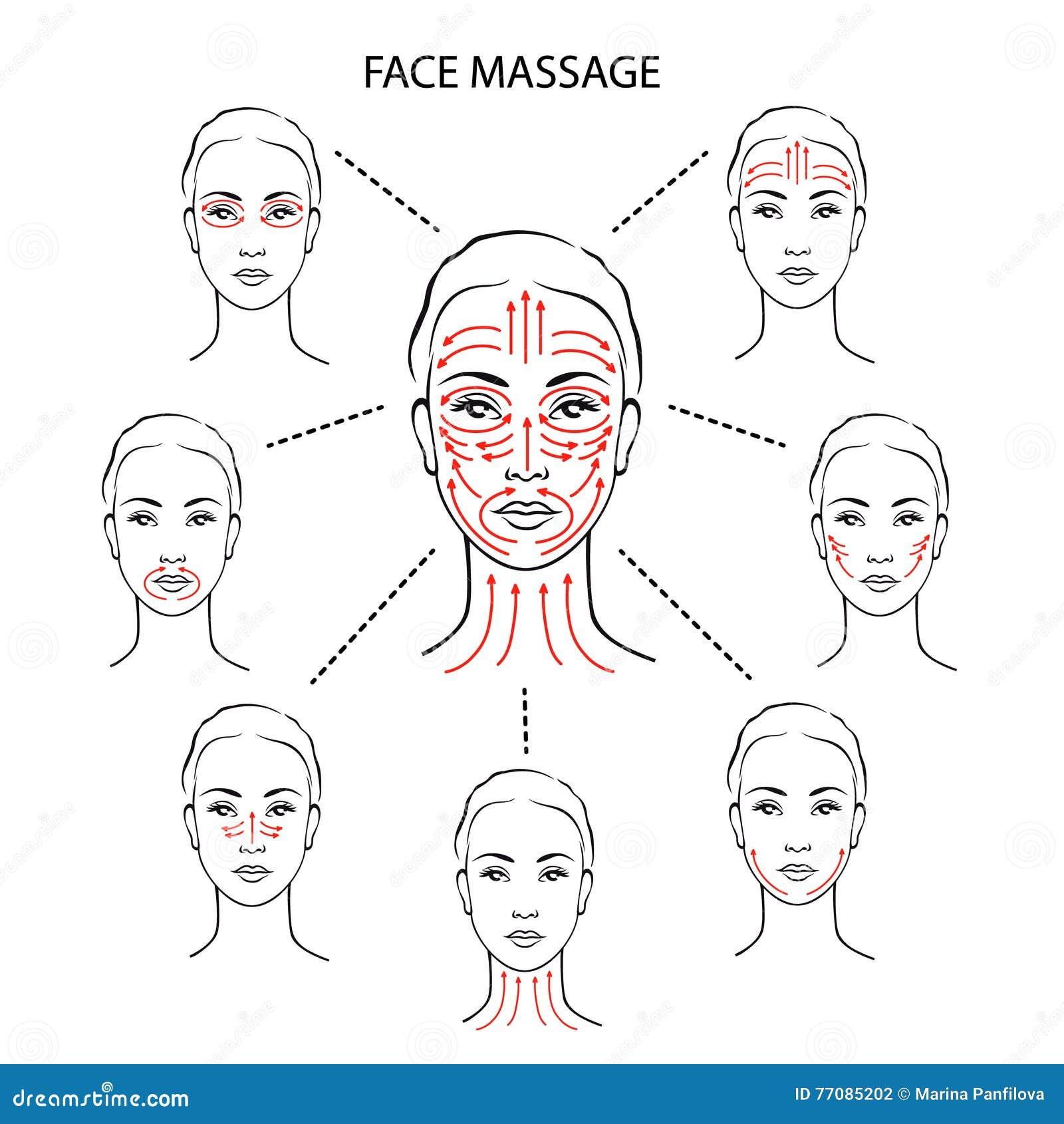 Set Of Face Massage Instructions Stock Vector Illustration Of