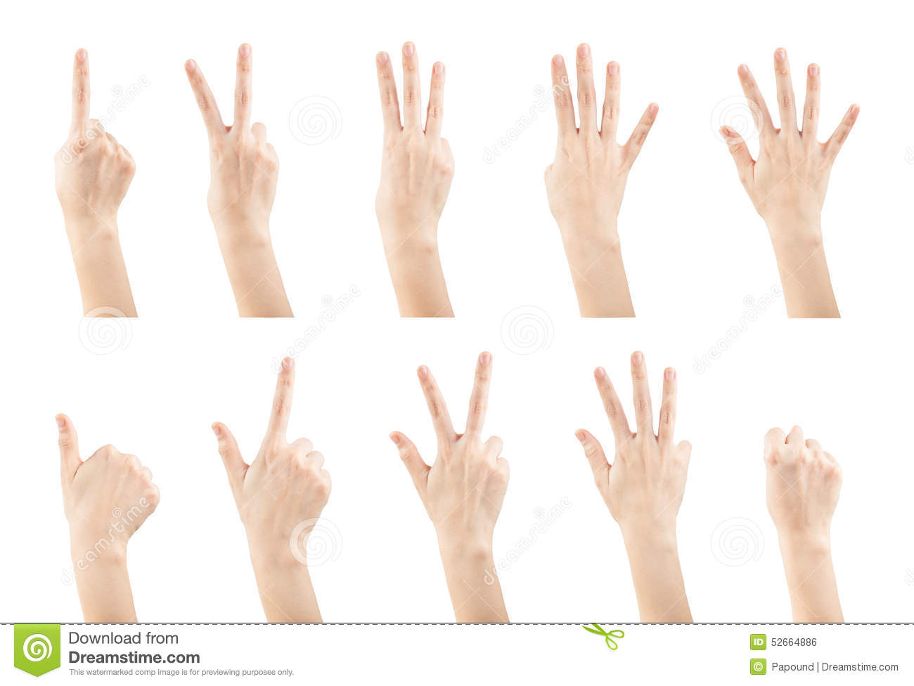 Set female hands gestures making a numbers