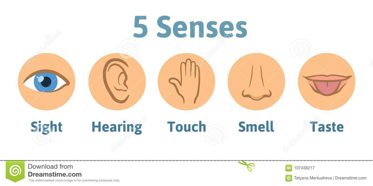 Set of five human senses icon: vision, hearing, smell, hearing, touch, taste. Eye, ear, hand, nose and mouth with tongue