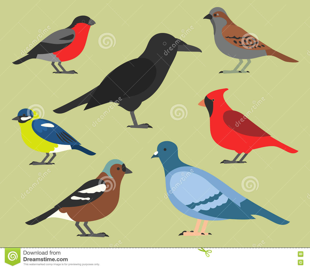 chaffinch cartoons illustrations vector stock images 101 pictures to download from. Black Bedroom Furniture Sets. Home Design Ideas