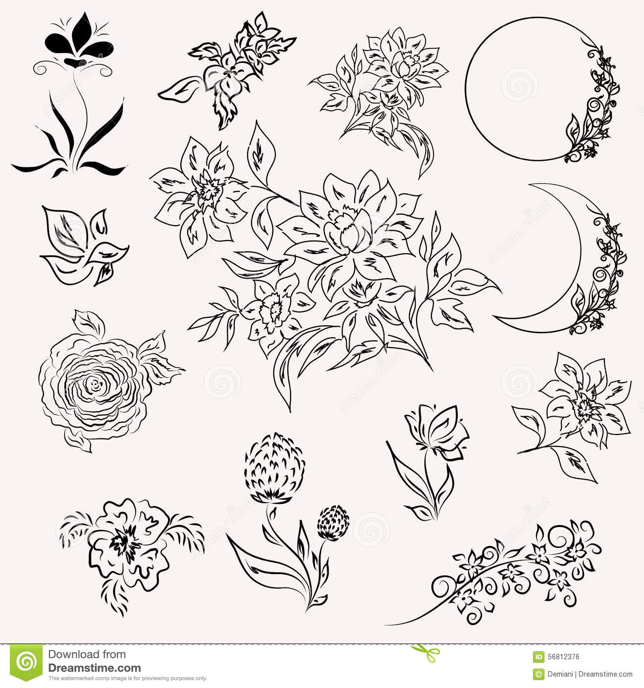 Set of floral elements stock vector. Illustration of other - 56812376